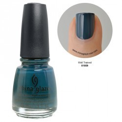 Vernis à ongles 14ML well trained all abord
