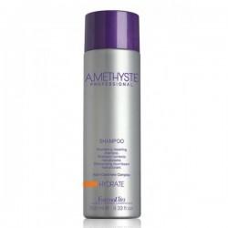 Shampoing Hydrate Amethyste 250ml